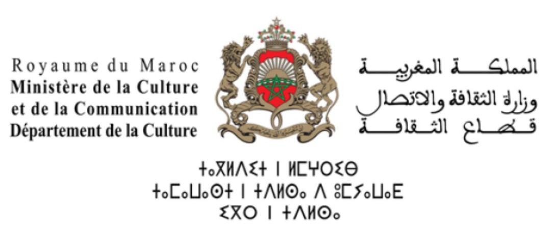 وزارة الثقافة والأتصال  تشرع في ضبط الجرائد الالكترونية القانونية