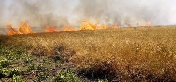 حرائق مهولة تندلع في عدد من المدن المغربية وتخلف خسائر كبيرة