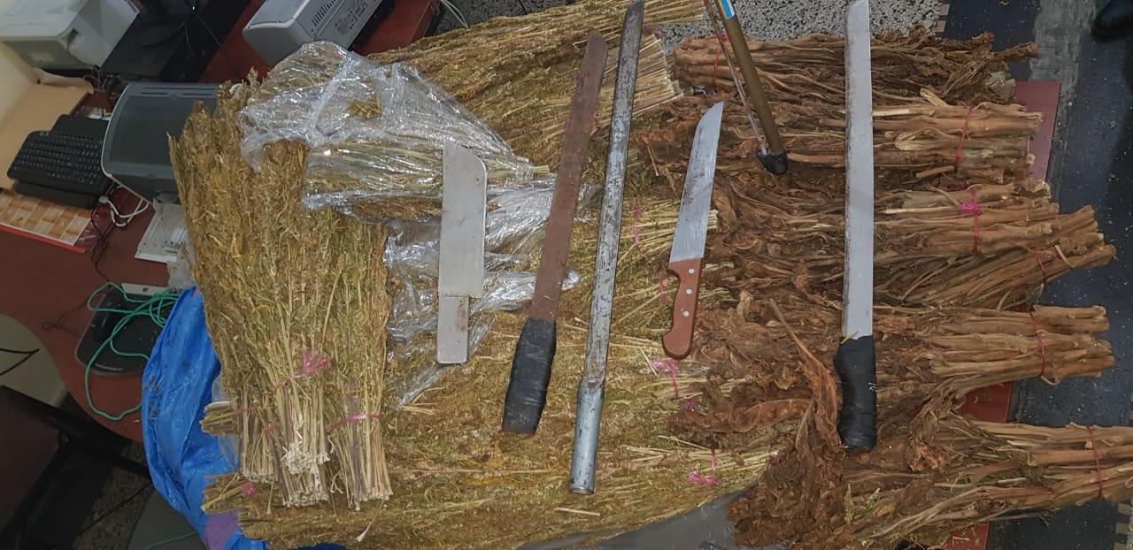 بالصور …حجز سيوف ومخدرات واعتقال مروجين في حملة تمشيطية بغابة بالمحمدية