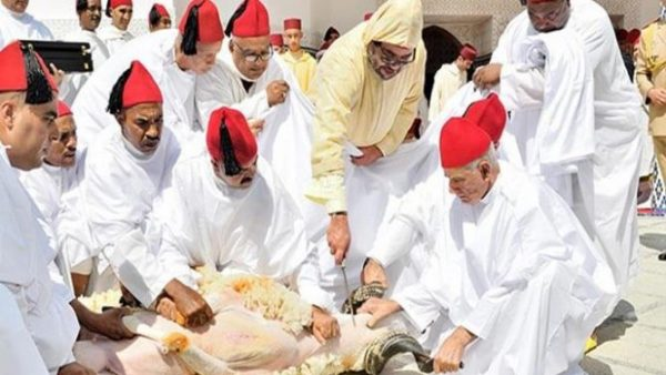 لأول مرة .. الملك يؤدي صلاة عيد الأضحى ويذبح الأضحية بتطوان
