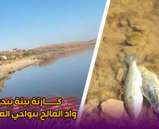 كارتة بيئية تهز بحيرة واد المالح بنواحي المحمدية .. شوفوا شنو وقع .. للاسماك