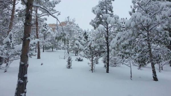 نشرة إنذارية : طقس جد بارد  وثلوج ورياح قوية بهذه المناطق