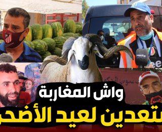 واش المغاربة مستعدون لعيد الأضحى ؟  أراء الشارع المغربي