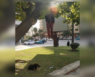 مشهد ضادم ،انتحار شخص شنقا أمام أنظار المواطنين،ووفاء كلبه